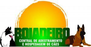 LOGO - ACADEMIA BOIADEIRO 1